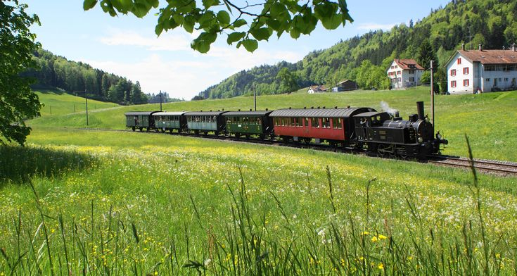 Dampbahn-Verein Zürcher Oberlans