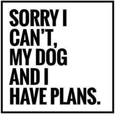 #dog #quotes – Hunde
