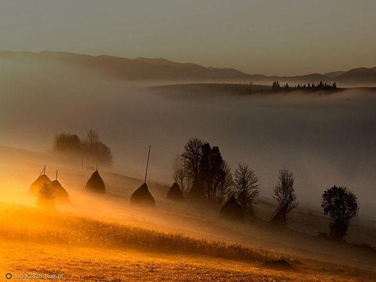 Kto rano wcześnie wstaje temu Pan Bóg daje........
