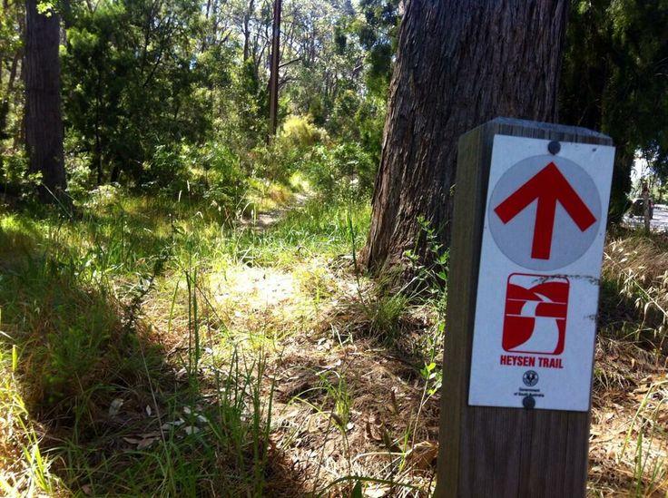 Walking the Heysen Trail in the Adelaide Hills   https://twitter.com/OffPiste4WDTour/status/411008936263704577/photo/1