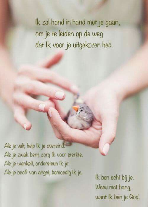 Citaten Geloof : Best images about bijbelteksten en liederen on pinterest