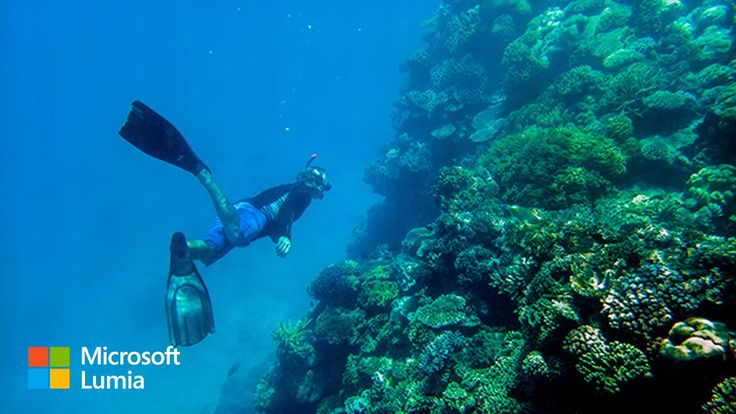 Expedition to Australia's Great Barrier Reef | Lumia and Nat Geo