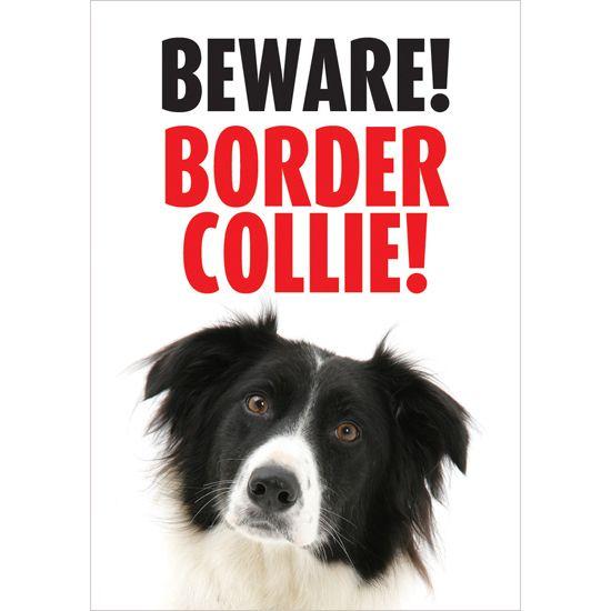 Beware Border Collie Gate/Door Sign