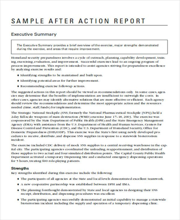 Amp Pinterest In Action Report Template New Things To Learn Executive Summary