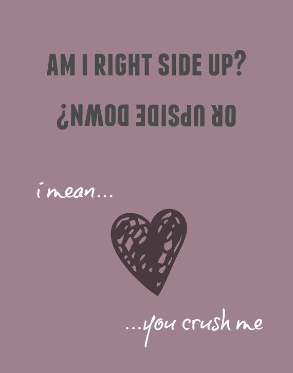 Dave Matthews Band Crush Lyric Digital Art by greystreetprints