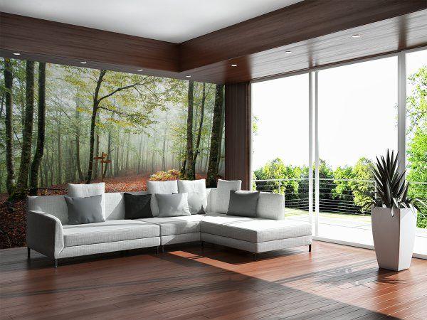 Jak w lesie... #Fototapeta z aranżacji ➡ http://bit.ly/Beech-forest  #Fototapety #walldecor #wallmurals #murals #decor