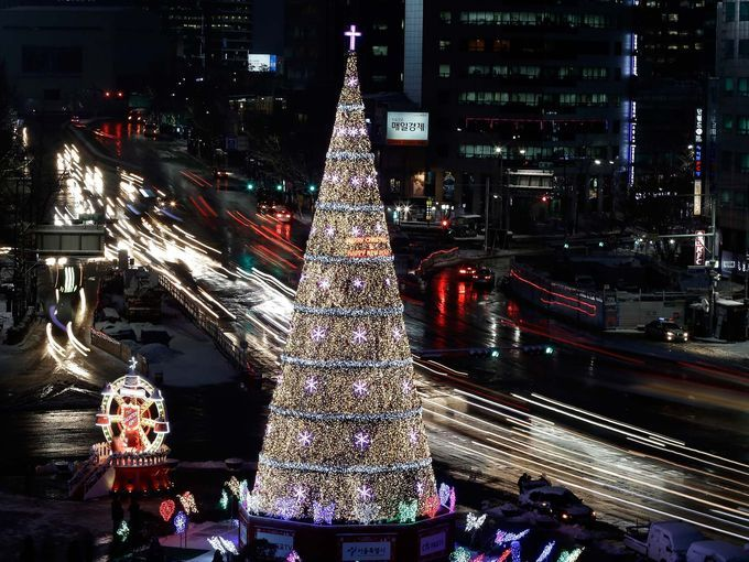 「south korean christmas tree」の画像検索結果