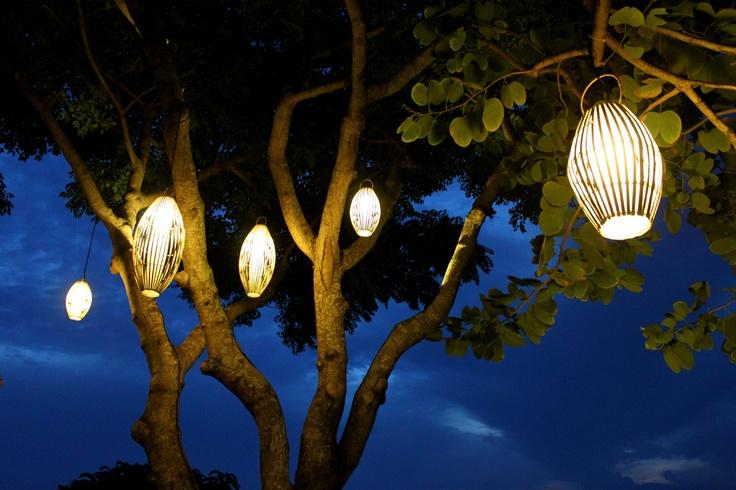 Tree Lights  www.batukaranglembongan.com