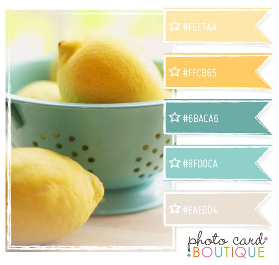 Lemon yellow and robin egg blue.  Love this scheme for a kitchen.