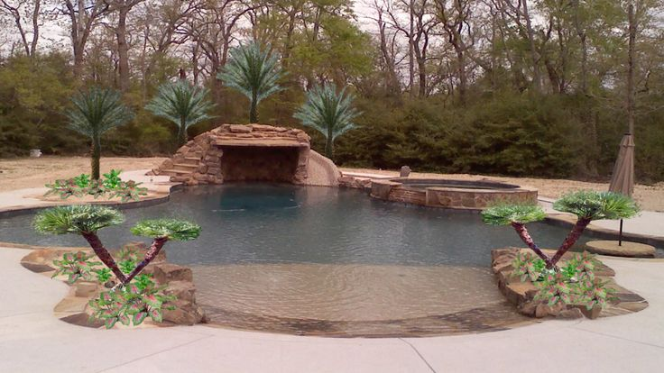 Pool Landscape Palm Trees Digital Design