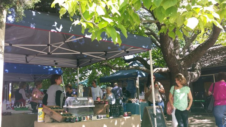 Bowral Growers Markets in the school grounds