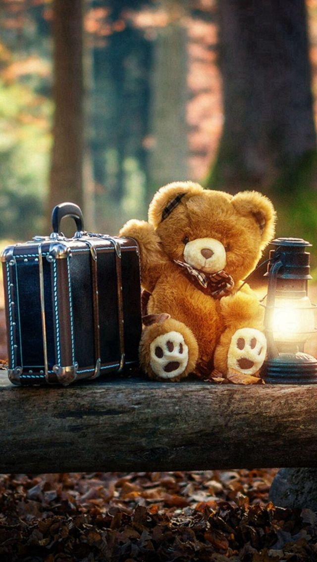 Forest Cute Bear Suitcase Lovely #iPhone #5s #wallpaper