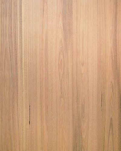 Australian Oak | Australian Sustainable Hardwoods (ASH)