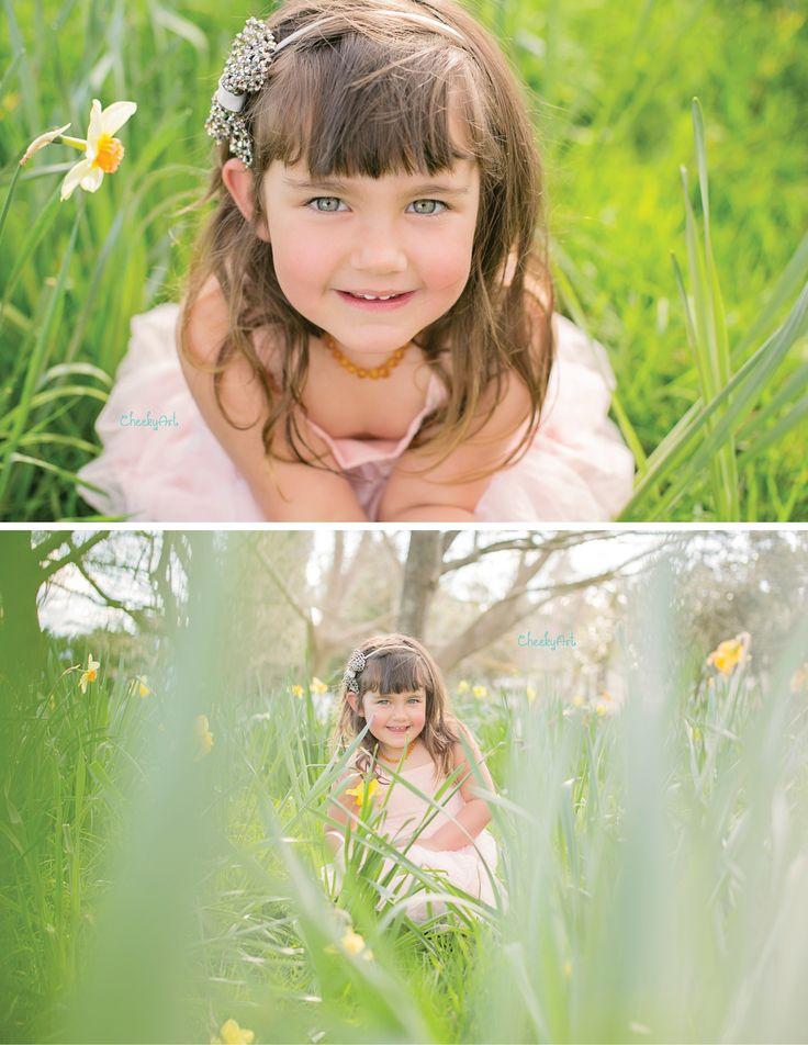 Spring   Daffodils   CheekyArt www.cheekyart.co.nz