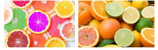 Citrus Fruits Import Data Which Makes It Convenient For Indian