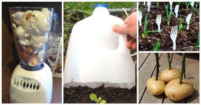 Gardening Hacks For A Greener Thumb