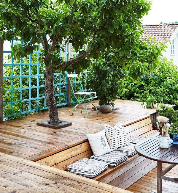 Great deck with tree cutouts