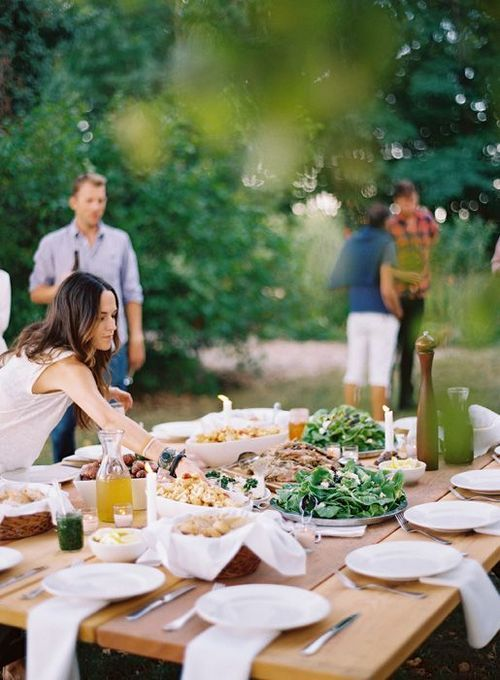 picnic dinner party with friends