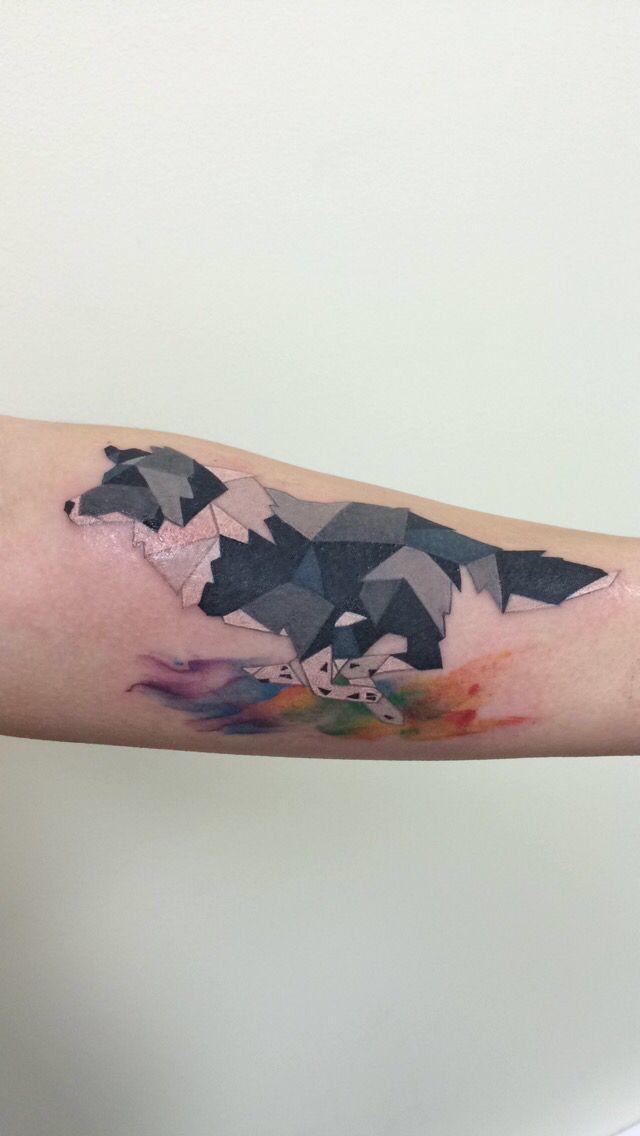 Best 25 border collie training ideas on pinterest for Tattoo apprenticeship age