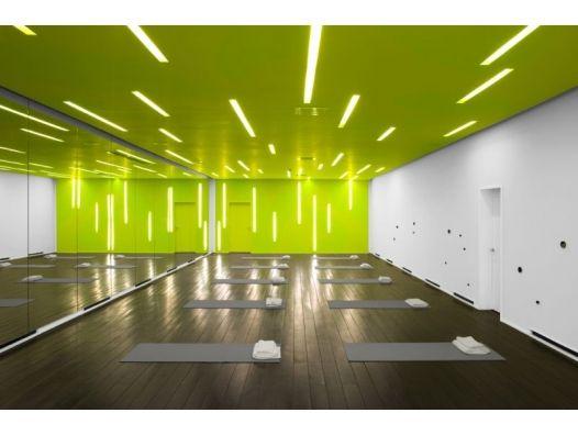 Y+ Yoga and Wellness Center   nhdro