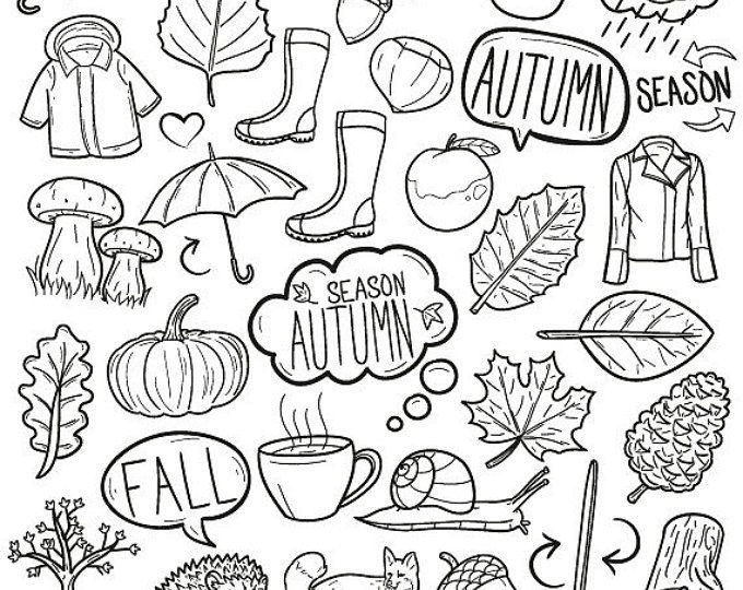 Hand Drawn Cute Autumn Clipart Illustration set Digital