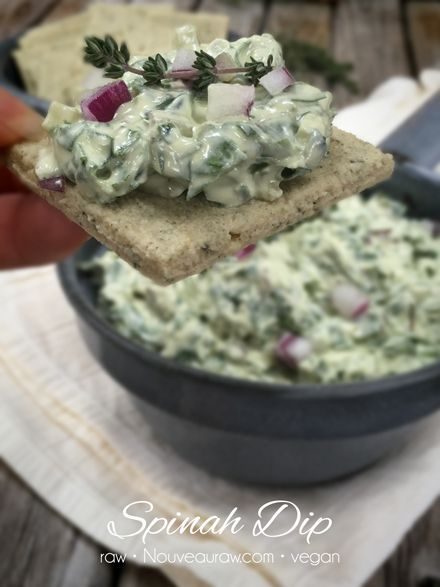 Spinach Dip (raw, vegan, gluten-free)  #kombuchaguru #rawfood Also check out: http://kombuchaguru.com With optimal health often comes clarity of thought. Click now to visit my blog for your free fitness solutions!