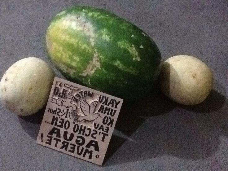 Sandías y melones!