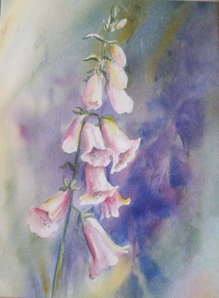 Foxgloves watercolour 45x30, 2000
