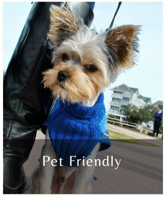 Pet Friendly Motel by Carolina Beach