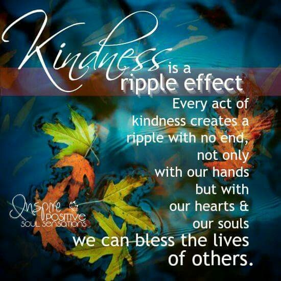 Compassion For Each Other: 1289 Best Images About Compassion,sympathy,gentleness