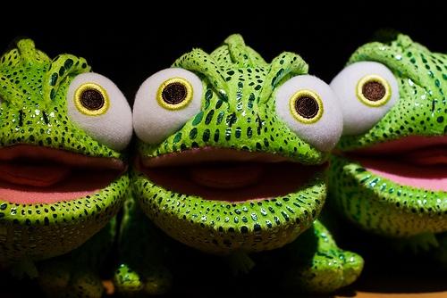 Frog x 3