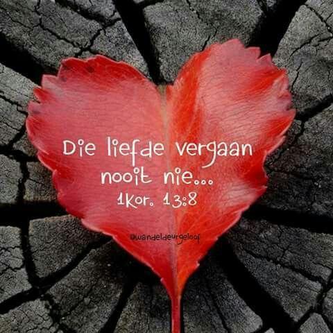 Liefde vergaan nooit nie