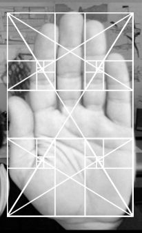 Notice. The hand fits relatively well into the golden rectangle as do individual fingers on the divisions. Some of the divisions and spiraling axis also fall at joints and fingertips. Pretty cool.