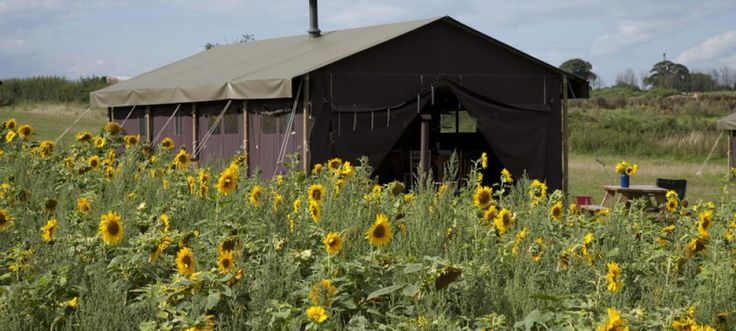 Glamping | Norfolk | Norwich | College Farm | FeatherDown