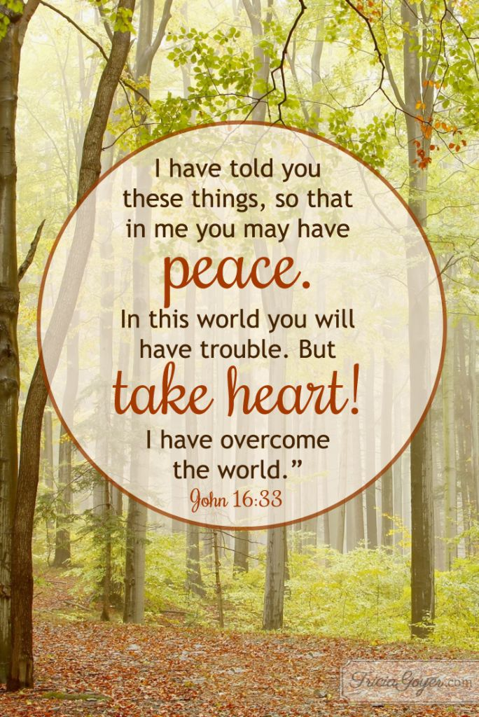 """John 16:33 (NKJV) ~~ These things I have spoken to you, that in Me you may have peace. In the world you will have tribulation; but be of good cheer, I have overcome the world."""" ~~ Take Heart! 