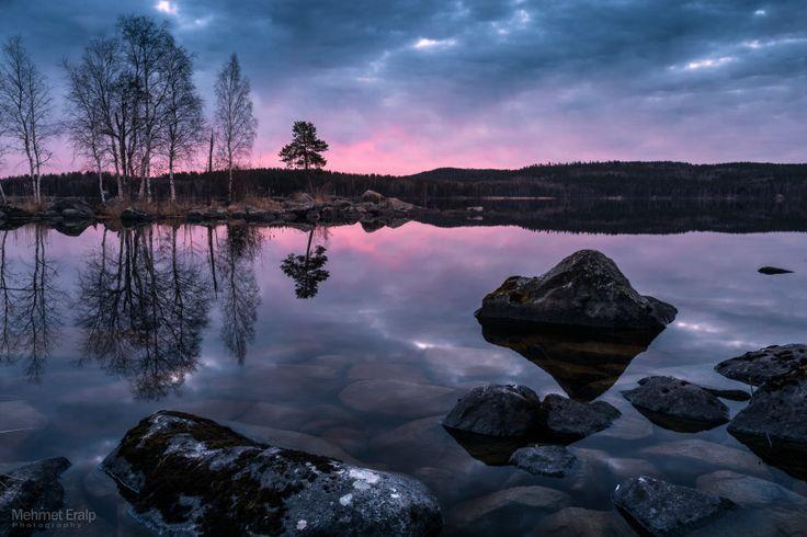 Pink - Jyväskylä - Finland [900 × 600]