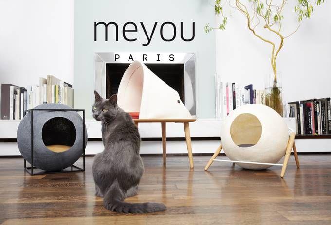 為貓設計家具,還誕生了自己的獨立品牌Meyou-微信上的中國