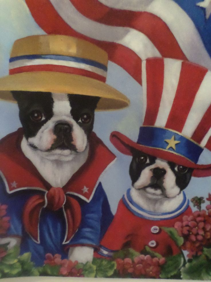 Boston Terrier Patriotic Garden Flag, Small Size, 12 By 18 Inches, Double