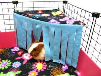 Corner Curtain from Guinea Pig Market.com  Will Make this For Nutmeg.