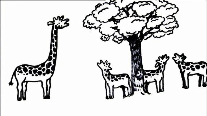 Film - 10 Dinge die du wissen musst (Evolution) - Planet Schule