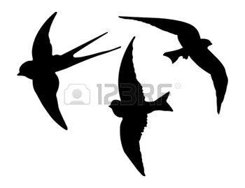 madár sablon - Google keresés