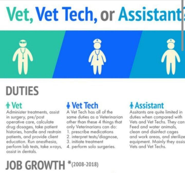 Every Job Is Important Vet Tech School Vet Tech Student Vet Technician