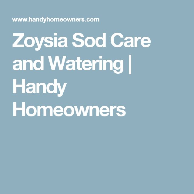 Zoysia Sod Care and Watering | Handy Homeowners