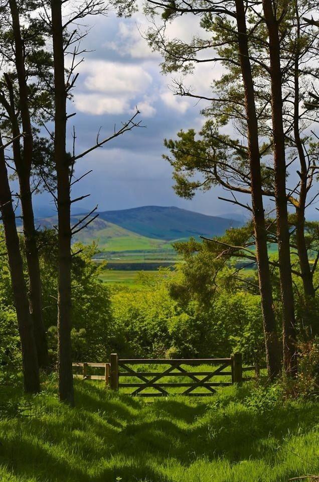 *Cheviot Hills, Northumberland