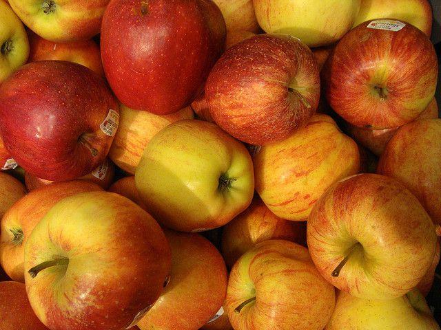 Appels als middel tegen overgewicht  Uit onderzoek blijkt dat appels misschien wel een heel goed natuurlijk medicijn kunnen zijn bij kwalen die te maken hebben met overgewicht. Ze bevorderen namelijk een gezonde balans van bacteriën in het spijsverteringsstelsel. Granny Smith blijken de meeste van deze gunstige componenten blijkt te bezitten. - See more at: http://theoptimist.nl/appels-als-middel-tegen-overgewicht/#sthash.vMTZBl5c.dpuf