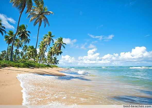 Praia do Forte Brazil - Headed here for Christmas this year!!! :)