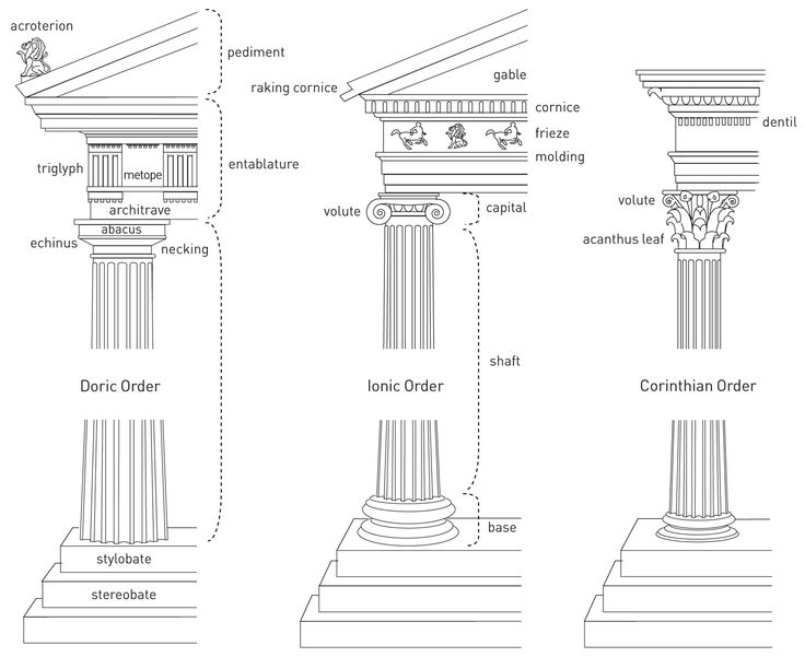 a diagram of greek column