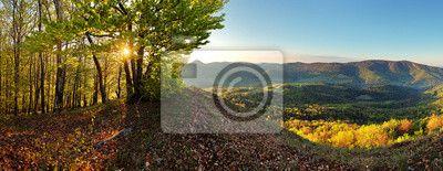Fototapeta Las - panoramiczny widok na góry