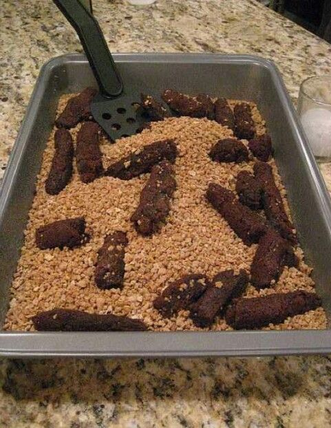 Gross Halloween party food - brownies in crushed grahams