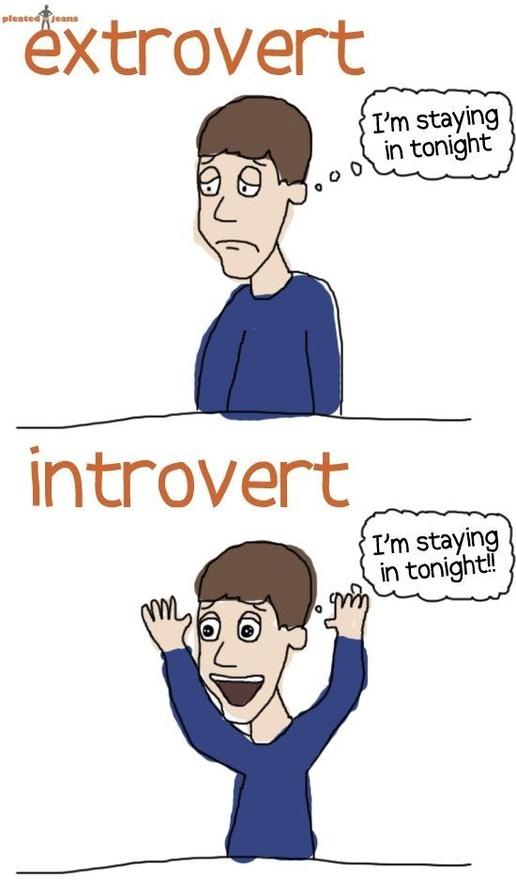 Extrovert vs. introvert.